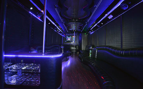 Long Island Bus - 25 Person Party Bus - Party Bus Long Island, NY