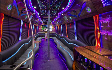 Long Island Bus - 30 Person Party Bus - Party Bus Long Island, NY