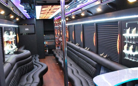 Long Island Bus - 39 Passenger Party Bus - Party Bus Long Island, NY